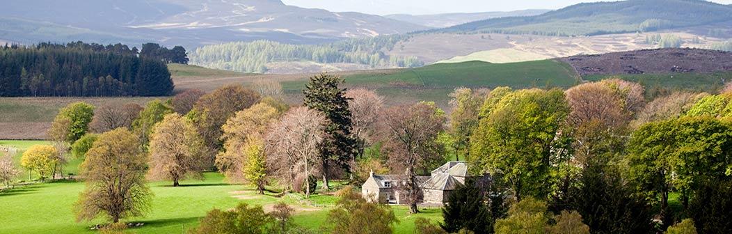 Ashintully Estate