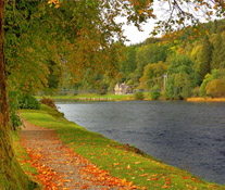 A Walk Along the River Spey
