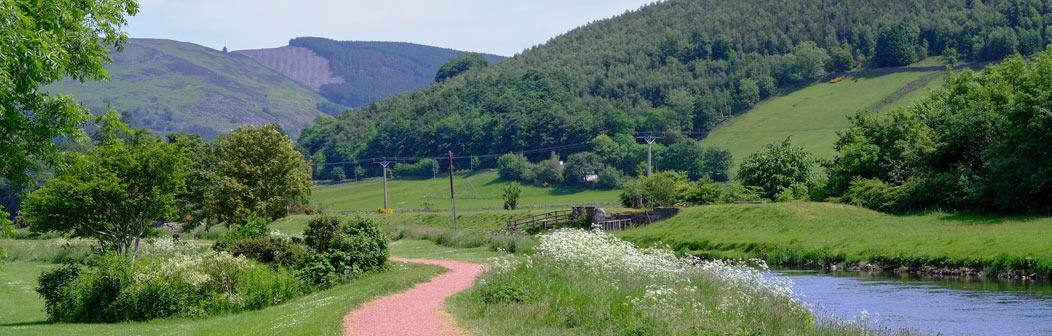 Tweed River Trails