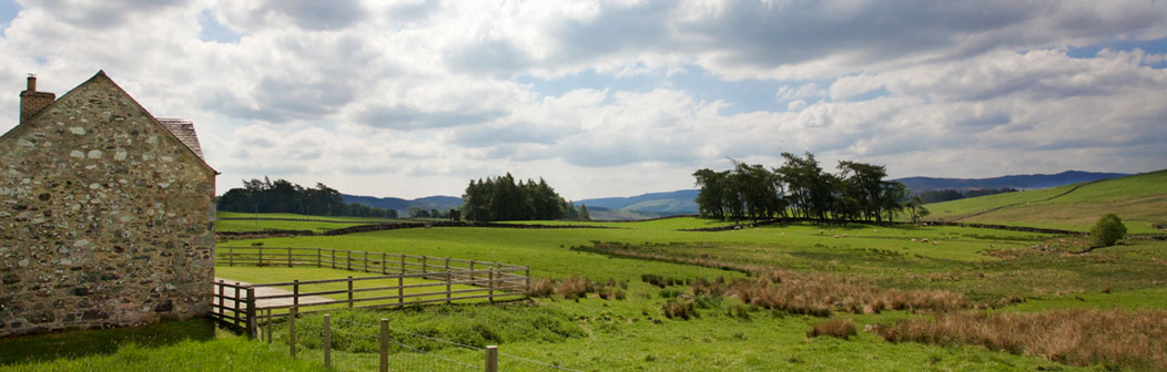 View from Woodend Cottage