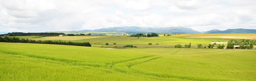 View across nearby fields