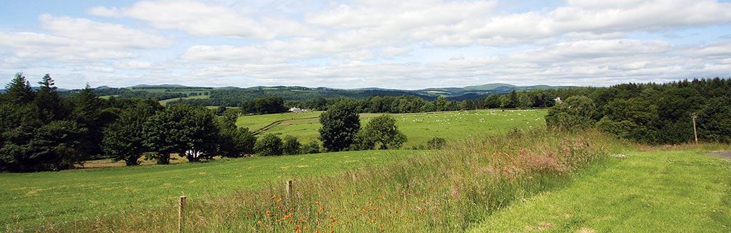 Newlands Barn banner2
