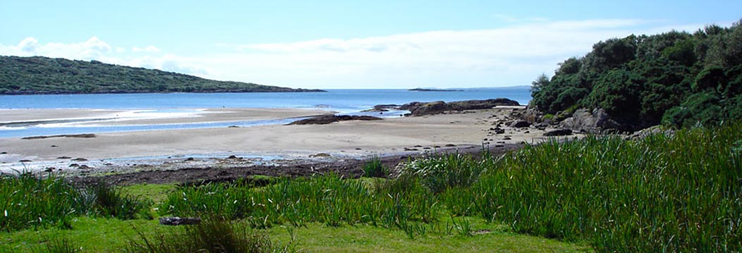 Nearby Carse Beach