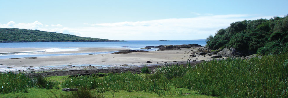Carse Bay & Beach
