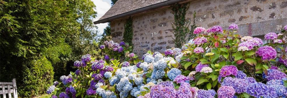 cottage-type.jpg