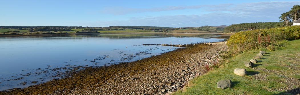 Pebbly shoreline