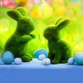 Easter Offers