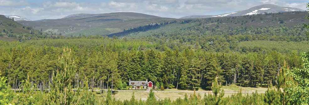 Linn Cottage