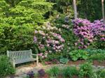 Harmony Garden