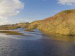 Loch Fleet Nature Reserve