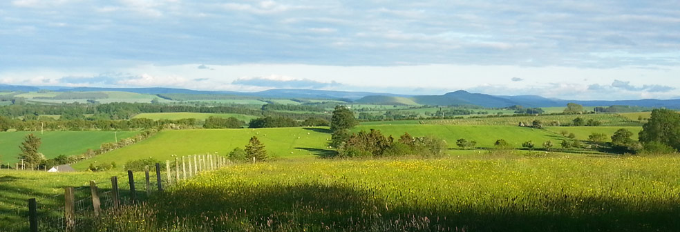 View over West Cottage to Minto Hills and Cheviots