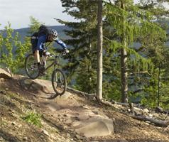 Newcastleton Mountain Biking