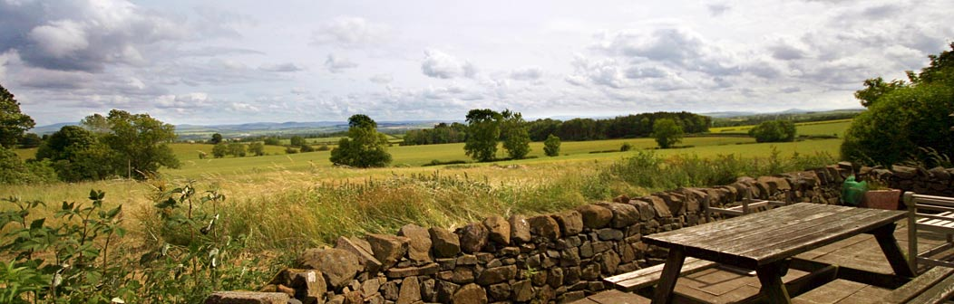 View from Parkend Cottage