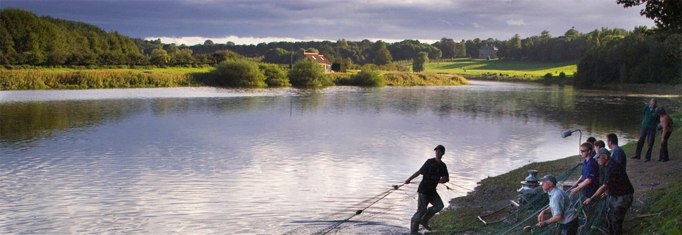 River Tweed Paxton House