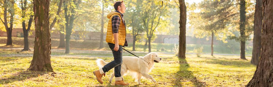 special-offers-man-walking-dog-banner.jpg