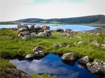 Taynish Nature Reserve