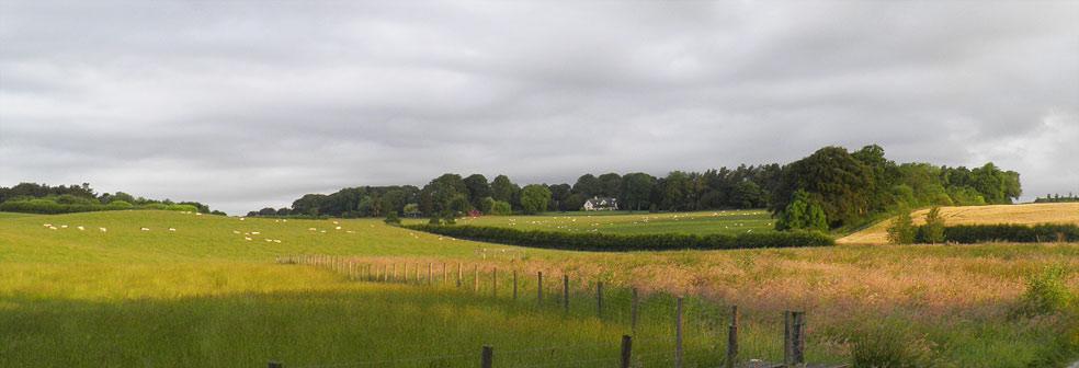 Whitmuir Estate