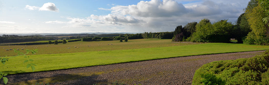 View from Whitmuir House
