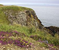 Burrow Head near Isle of Whithorn
