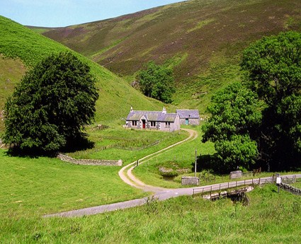 Windgill Cottage